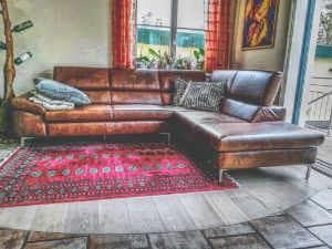 Couch-reinigen-Ledercouch-privat2